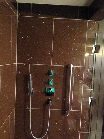 The Chatwal, A Luxury Collection Hotel, New York: Shower