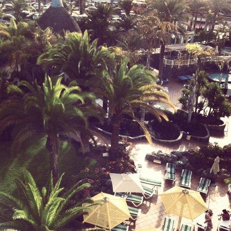 IFA Buenaventura Hotel: Vista