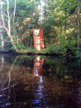 Great Dismal Swamp National Wildlife Refuge: 1