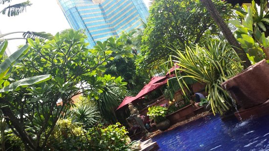 Sheraton Grande Sukhumvit, A Luxury Collection Hotel: Nice pool, narrow but with great tropical feel