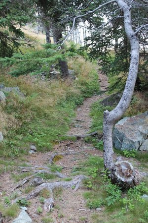 Hole-in-the-Wall Park & Campground : The path to our site