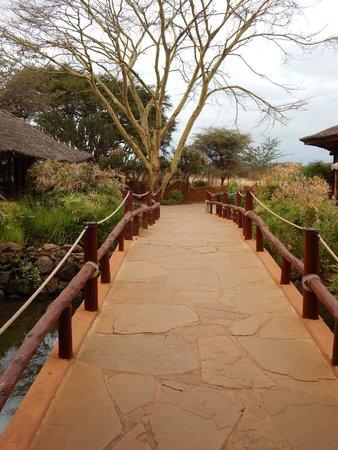 Amboseli Sopa Lodge: Path to room