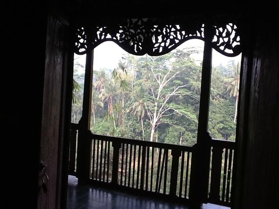 Villa Awang Awang: View from our verandah