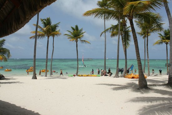 Barcelo Bavaro Palace : Beach