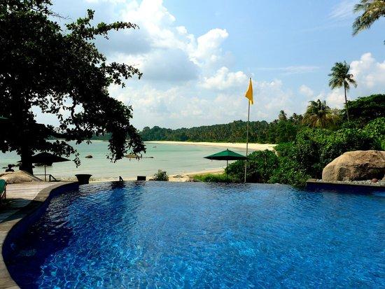 Banyan Tree Bintan: pool view 1