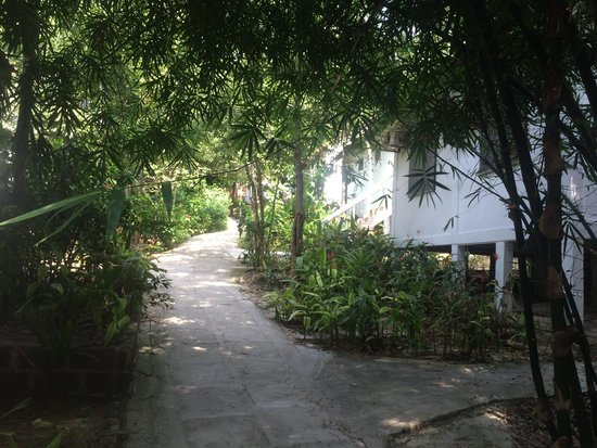 Perhentian Tropicana Inn: Small alley with the white chalets