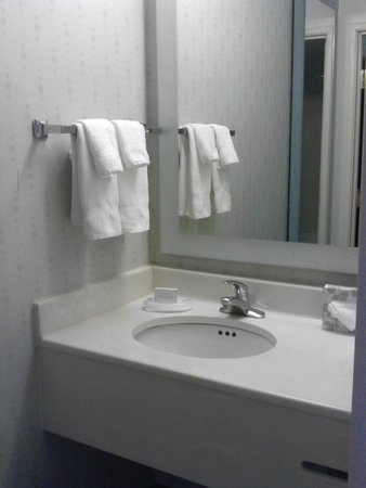 SpringHill Suites Louisville Hurstbourne/North: clean