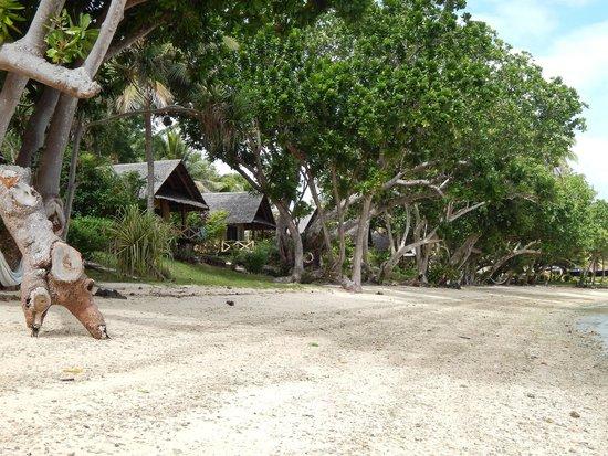 Aore Island Resort : Aore Island Beachfront