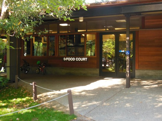 Yosemite Valley Lodge : outside the food court