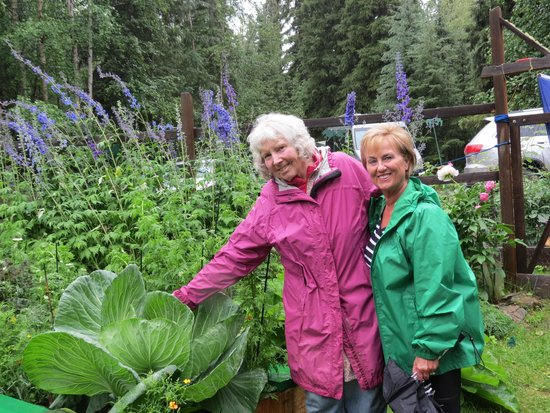 Alaskan Tails of the Trail with Mary Shields: Mary's large Cabbage 40 pound!