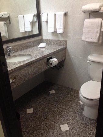 Drury Inn & Suites Columbus Convention Center: Bathroom