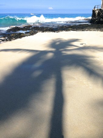White Sand Beach : 木陰は涼しい〜