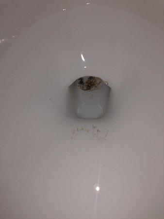 Cloverleaf Suites Columbus Dublin: That is rust in the toilet