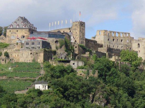 Romantik Hotel Schloss Rheinfels: L hotel vu du Rhin