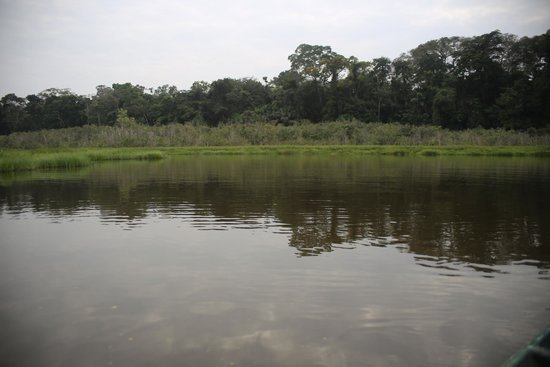 Refugio Amazonas: Looking for caiman and other wildlife