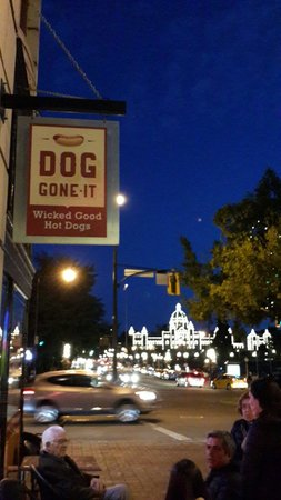 Evening snack at Dog gone It