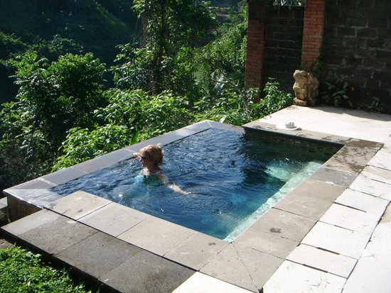 Natura Resort and Spa: Relaxing in our private pool looking over the jungle