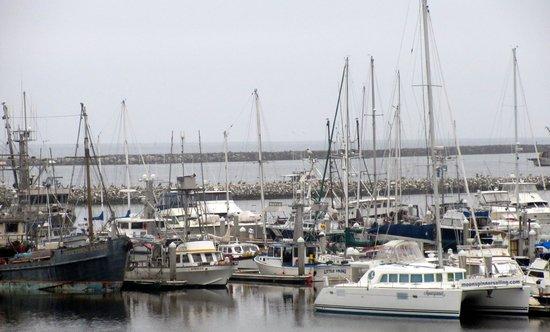 Pillar Point Harbor, Half Moon Bay, Ca