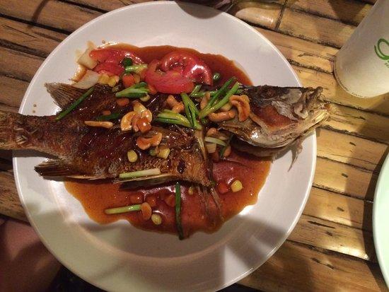 Orchid Cafe: Schöner Fisch, leider tot frittiert!