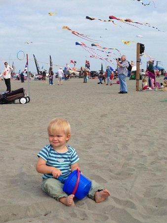 Long Beach : International Kite Festival 2014