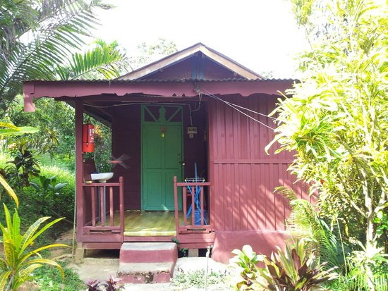 Durian Chalet: Chalet