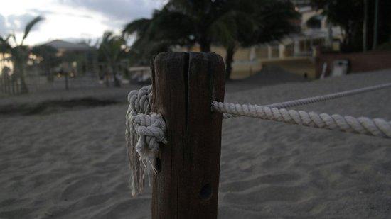 CasaMagna Marriott Puerto Vallarta Resort & Spa: Random photo in the Marriott Resort grounds