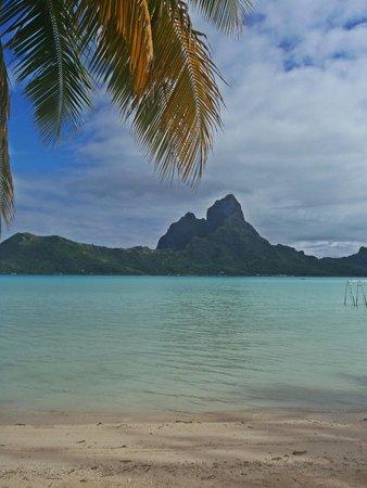 """Eden Beach Hotel Bora Bora: From our """"Private Beach"""""""