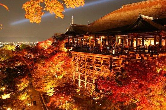 معبد كيوميزو: 奥の院から見た景色