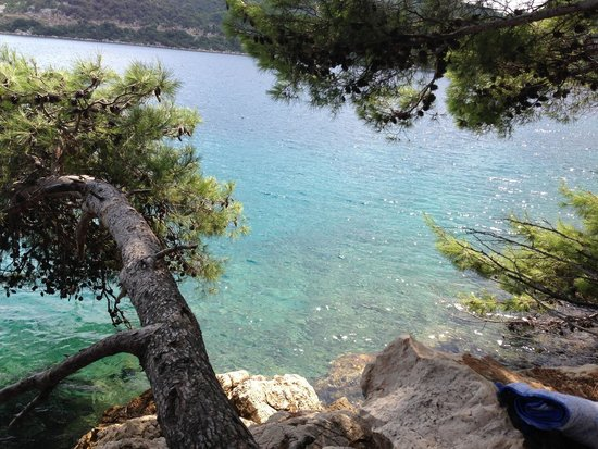 Mljet: Pictures don't do it justice.