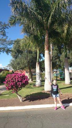 Duna Beach Bungalows: Flott natur i nærområdet i og med golfbanen finnes der