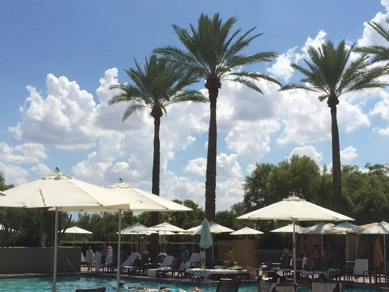 Fairmont Scottsdale Princess : View looking out from South Pool towards golf course.