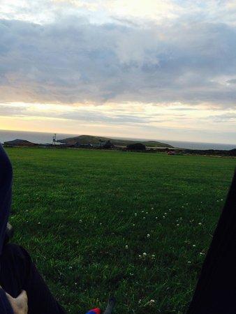 Cardigan Island Coastal Farm Park: View from tent
