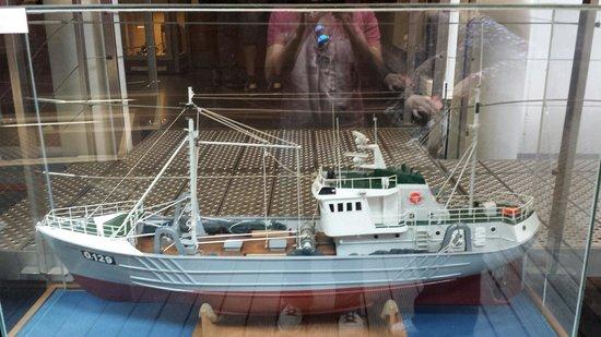 Museumschip Amandine : Das Modell des Schiffes