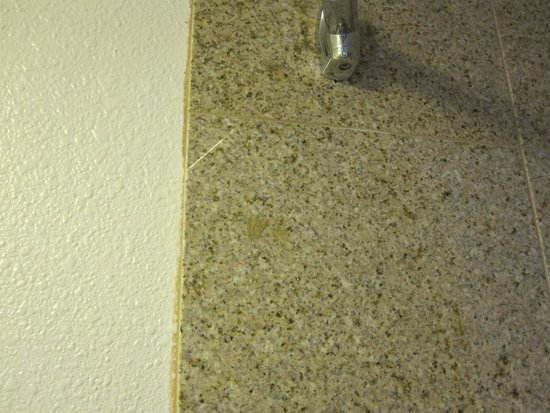Studio 6 Willows: Some sort of paste or glue on the shower walls.