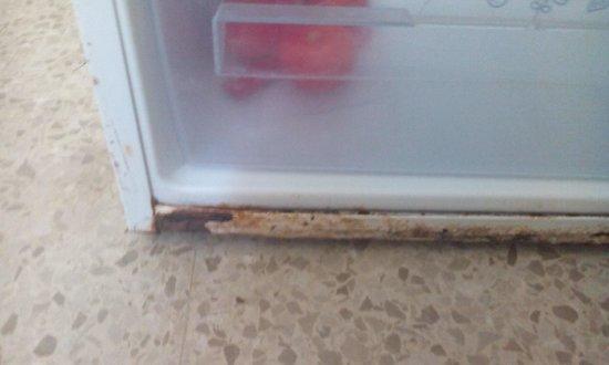 Apartments Buensol: rusted fridge end