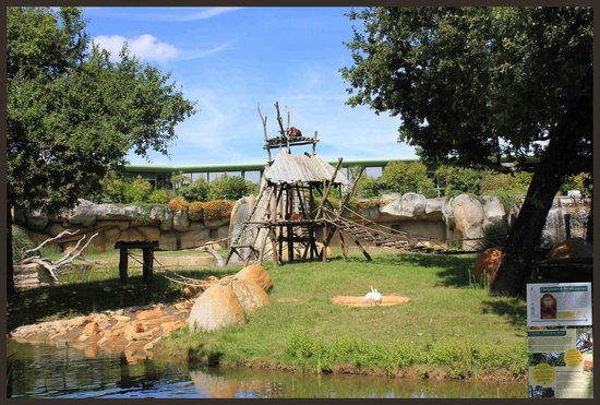 La Palmyre Zoo : Zoo de la palmyre