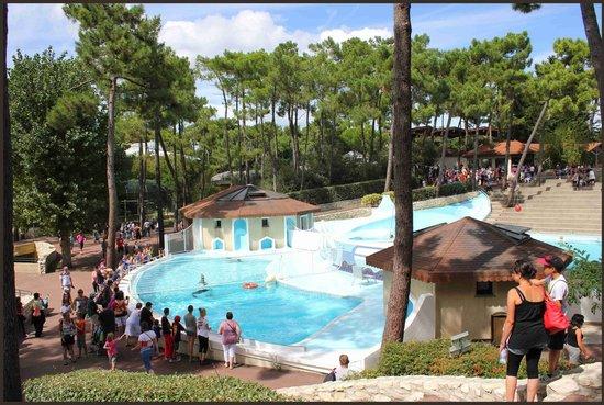 La Palmyre Zoo: Zoo de la palmyre