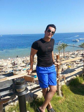 Island View Resort: Fantastic