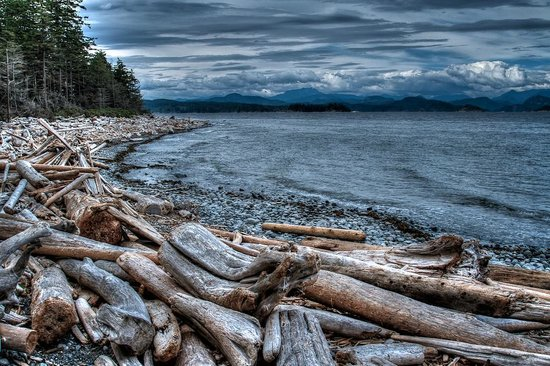 Quadra Island, Canada: view from rock isl.
