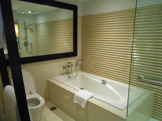 Vasca Da Bagno Vista : Vasca da bagno con vista sulla camera foto di millennium hilton