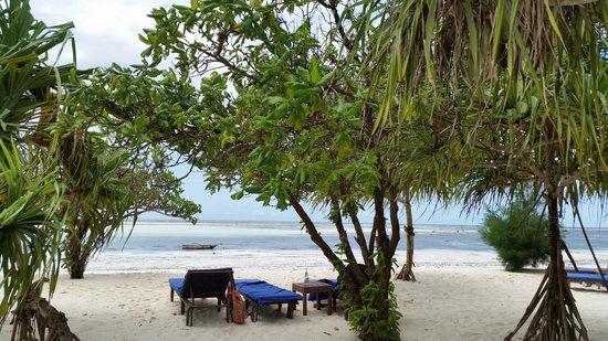 Neptune Pwani Beach Resort & Spa: the beach