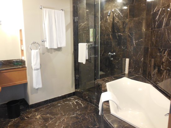 Grand Copthorne Waterfront Hotel: awesome bathroom