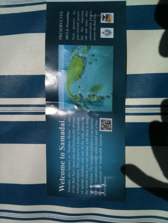 Dolphin House Reef (Sha'ab Samadai) : il ticket