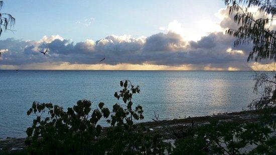 Heron Island Resort: Sunrise