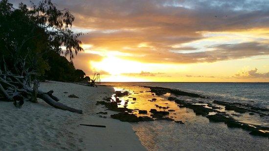 Heron Island Resort: Sunset