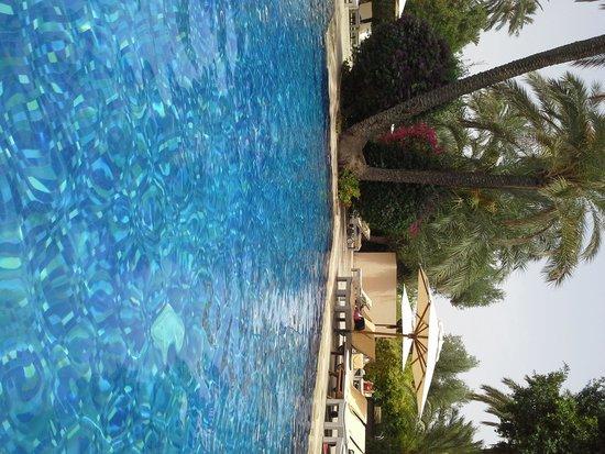 Club Med Marrakech le Riad : entre piscine et palmier