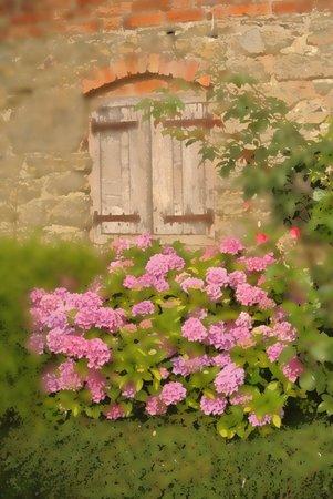 Stockton Mill : Mill window