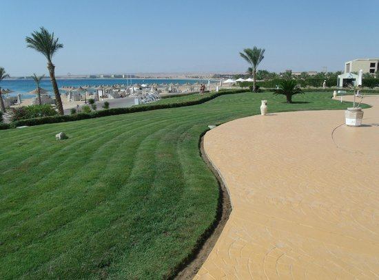 Old Palace Resort: View from poolside to the beach & Red Sea