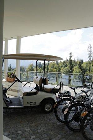 Hotel Villa Honegg: Golf carts and bikes available