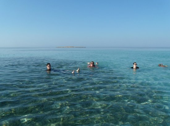 Old Palace Resort: Snorkeling - 1 hour out by boat & 3 feet deep!